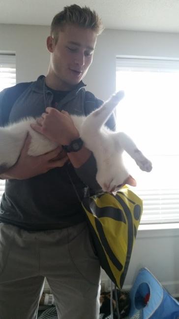 Kitten baby Theo + Matthew